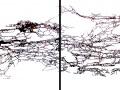 trames-diptyque-aquarelle-60x160cm-2019